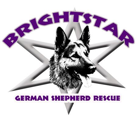 About Us Brightstar German Shepherd Rescue